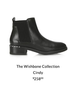 The Wishbone Collection - Cindy
